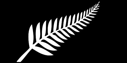 NZ Fern Flag